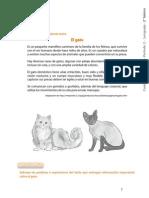 2Basico_LENG_Act_clase_28.pdf