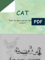 Láminas CAT