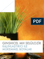 Great Paints with GINSHICEL MH (turkish).pdf