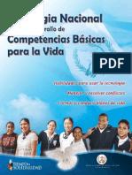 Estrategia Nacional Competencias_LR
