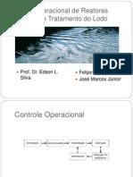 Controle Operacional de Reatores Anaeróbios e Tratamento do Lodo