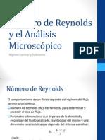 Número de Reynolds y el Análisis Microscópico.Lab.Int1