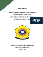 PROGRAM KERJA MAHASISWA KKN MANDIRI (Repaired).docx