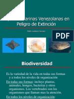 Especies Marinas Venezolanas en Peligro de Extinción.pdf
