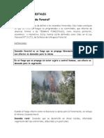 A Que Llamamos Incendio Forestal