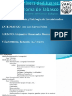 Alejandro Hernandez Montejo - Artropodos