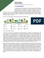 Sistemas Agro Florestais