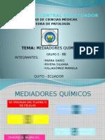 eXPOSICION DE mEDIADORES qUÍMICOS