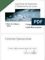 Controle operacional reatores anaeróbios e tratamento do lodo .pptx