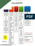 FMS and SFMA Triage.pdf