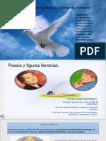 La poesía y figuras literarias.