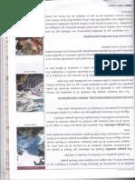 181.pdf