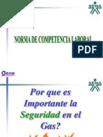 Acetatos Norma de Competencia Laboral