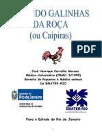 GALINHASCAIPIRASAPOSTILA.pdf