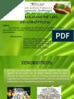 METABOLISMO DE LOS XENOBIÓTICOS (2)