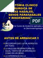 AnatFosas