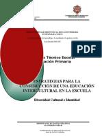 ConsTecIntercultural Prim