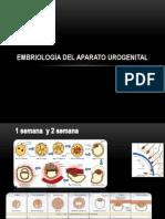 Anato, Embrio y Fisio Del Aparato Reproductor Femenino