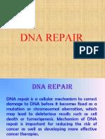 DNA repair-r.ppt