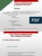 MATERIAL DE APOIO ALUNO - AULA 3 E 4 - ORGANIZAÇÃO DE UMA EMPRESA