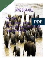 PROVINSI BENGKULU.pdf