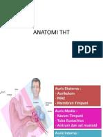 ANATOMI THT.ppt