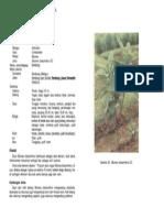 2-045.pdf
