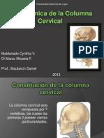 Biomecanica de La Columna Cervical