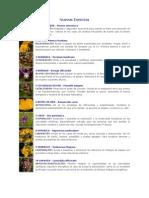 Esencias Florales - Nuevas Esencias
