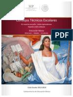 Guia Consejos Técnicos Escolares..pdf