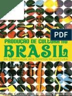 producao_de_cultura_no_brasil.pdf