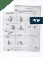 Reacciones_debidas_a_vinculos.pdf