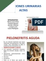 Itu Alta Exposicion Bacterio 2013-2