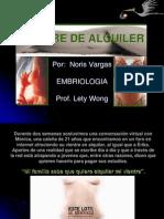 vientredealquiler-091213232908-phpapp02