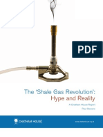 The 'Shale Gas Revolution'- Hype and Reality.pdf