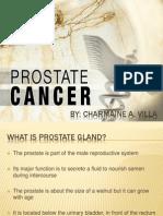 Villa Prostate