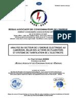 analyse du secteur de energetique au cameroun.pdf