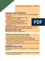 Passive Voice Examples.docx