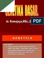 KBK genetika.ppt