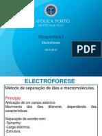 electroforese_2013_2014