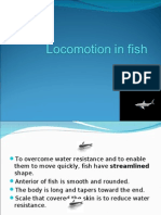 Locomotion in Fish2