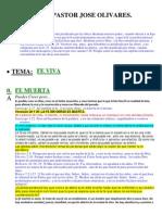 FE VIVA.pdf