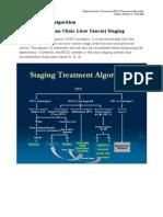 Hepatocellular Carcinoma (HCC) Treatment Algorithm 2013
