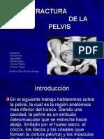 Power de Pelvis