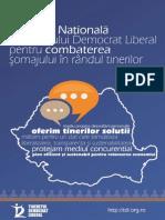 Strategia Nationala a TDL.pdf