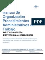 Manual de Procedimientos Proteccion Al C Ejemplo