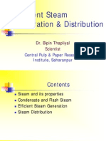 Efficient Steam Generation & Distribution