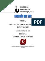 113 Energia Tanatologia Tesina