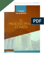 04 Juzgamiento - Principios - Salas Beteta 2011_1