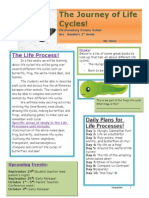 Life Cycle Newsletter- Second grade